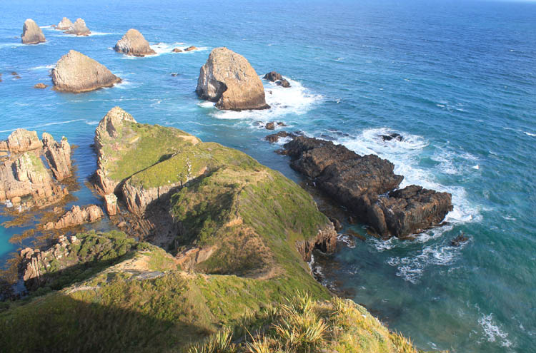 Nugget Point, the Catlins coast, New Zealand