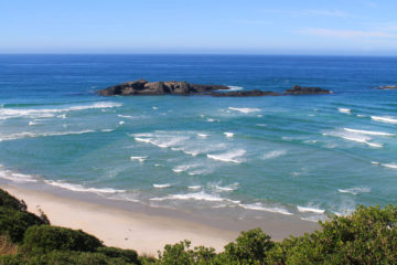 Visit Smails Beach while at Tomahawk Beach, Dunedin, New Zealand