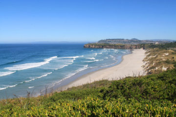 View of Tomahawk Beach, Dunedin, New Zealand