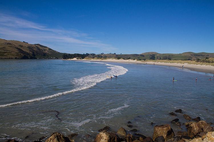 Surfing at Aramoana Beach, Dunedin, New Zealand