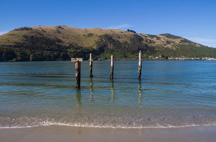 Aramoana Beach, Dunedin, New Zealand