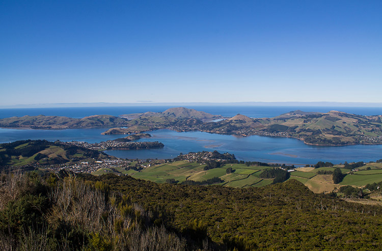 Beautiful view from the top of Mount Cargill, Dunedin, New Zealand