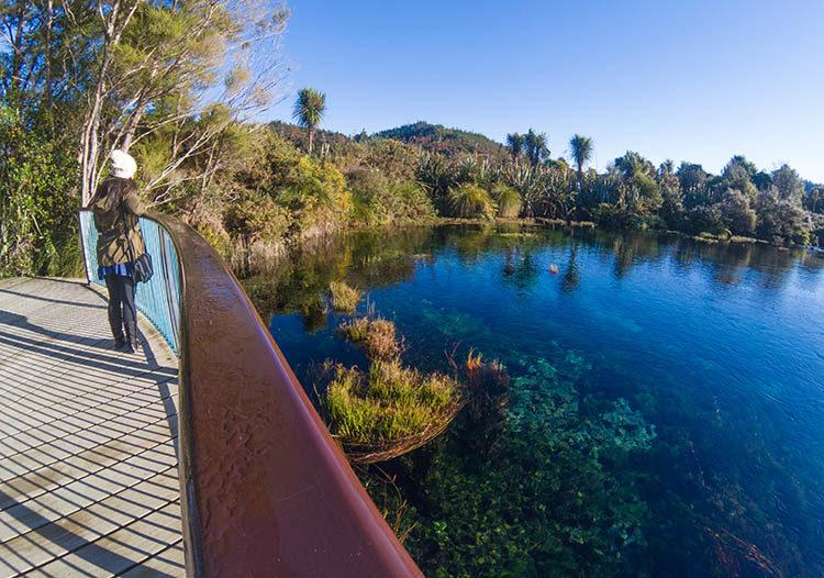 Te Waikoropupū Springs, Golden Bay, New Zealand