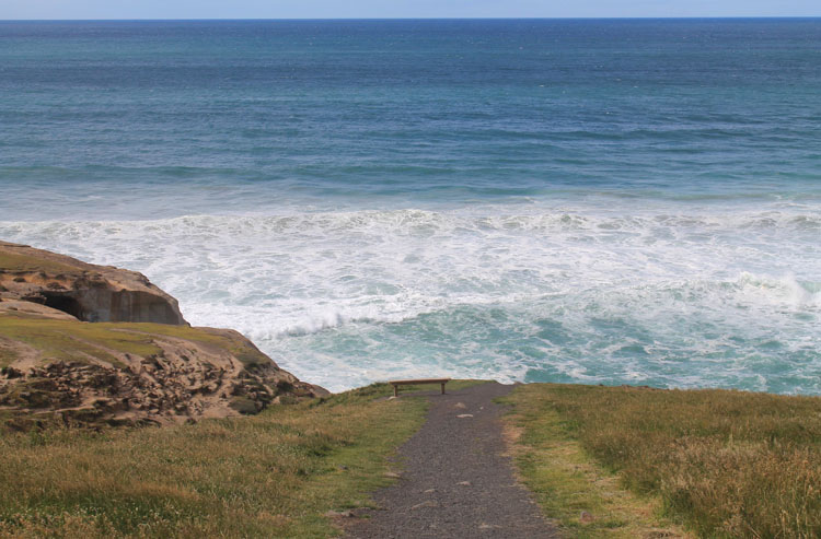 A path to the Pacific Ocean near Tunnel Beach, Dunedin, New Zealand