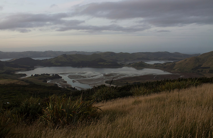 The view of Hoopers Inlet from the Sandymount Track, Dunedin, New Zealand