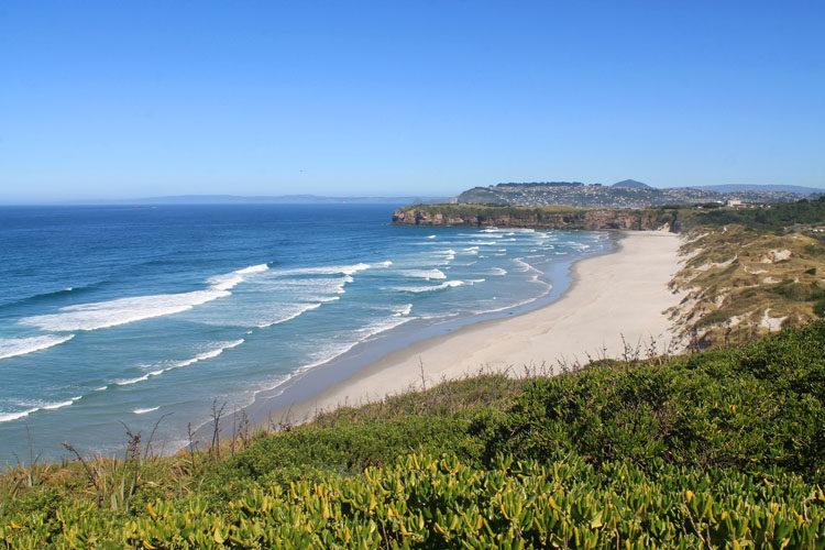 View of Tomahawk Beach, Dunedin, New Zealand