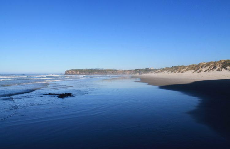 Tomahawk Beach, Dunedin, New Zealand