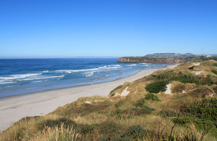 The view from the dunes at Tomahawk Beach, Dunedin, New Zealand
