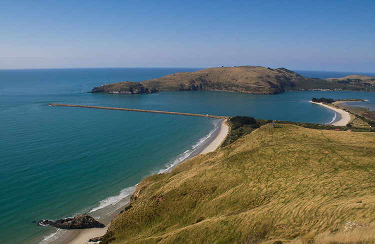 The view over Aramoana Beach and Mole from the Heyward Point Track, Dunedin, New Zealand