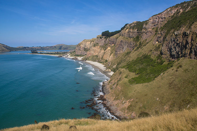 Hiking to Heyward Point, Dunedin, New Zealand