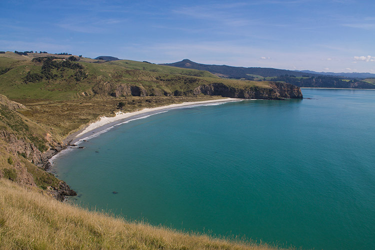 Heyward Point, Dunedin, New Zealand