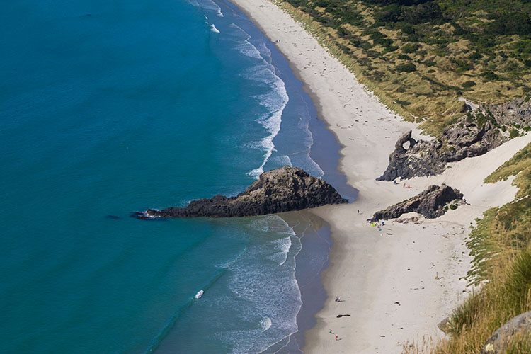 Aramoana Beach from above on the Heyward Point Track, Dunedin, New Zealand