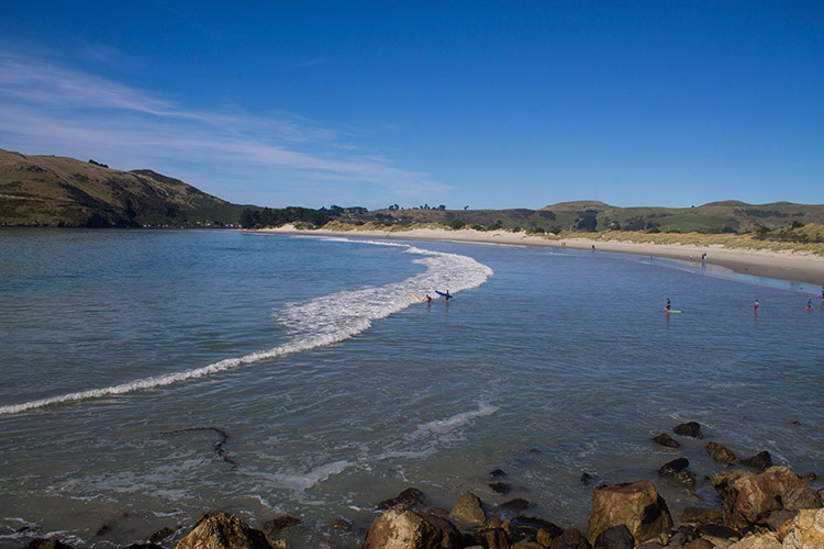 Surfing at Aramoana Beach, Dunedin, New Zealand