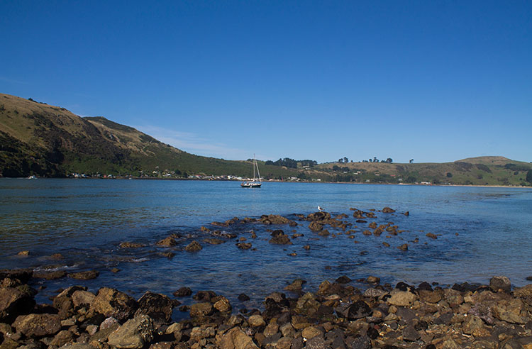Aramoana Beach and Otago Harbour, Dunedin, New Zealand