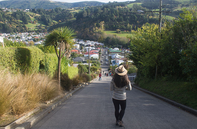 Walking up Baldwin Street, one of the top things to do in Dunedin, New Zealand