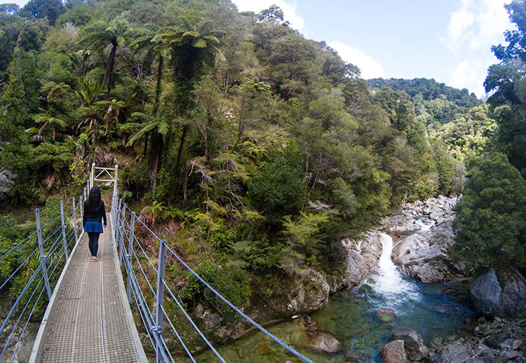 A suspension bridge on the Wainui Falls track, Abel Tasman National Park