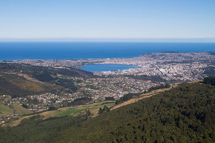 Dunedin, New Zealand seen from Mount Cargill