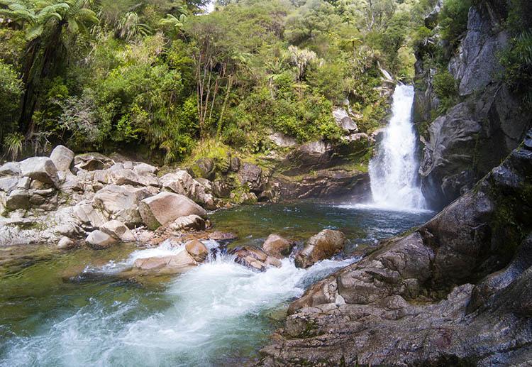 Hiking to Wainui Falls, Abel Tasman National Park