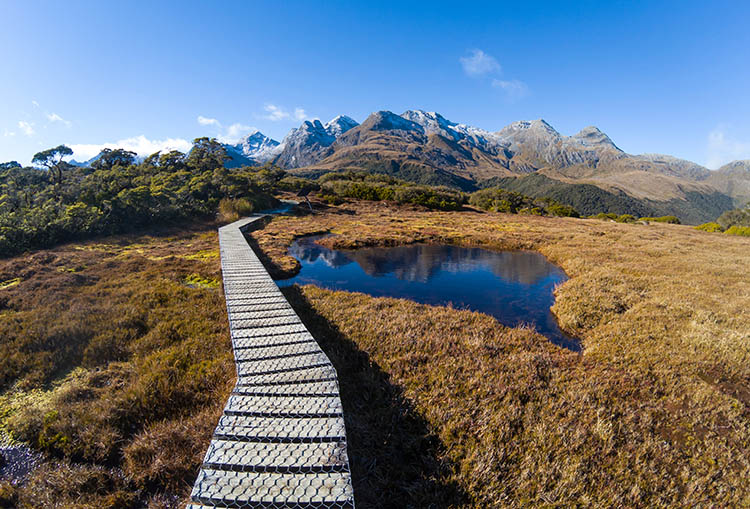 Hiking to Key Summit, Fiordland National Park, New Zealand