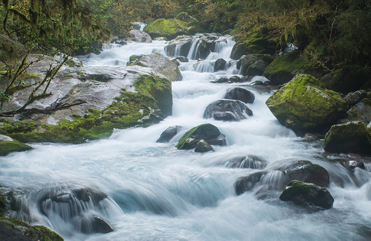 Marian Falls, Lake Marian Track, Fiordland, New Zealand