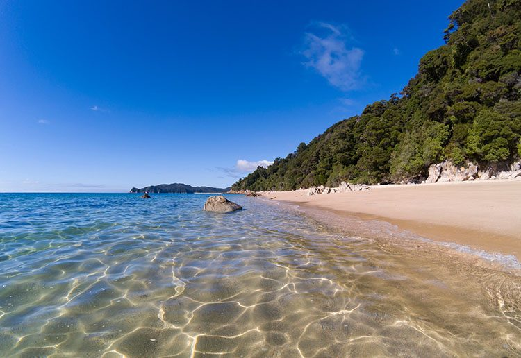 Hiking to Goat Bay, Abel Tasman National Park