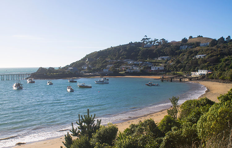 The best things to do in Moeraki, New Zealand