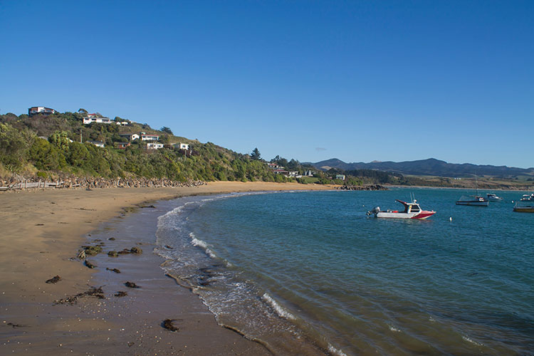 The best things to do in Moeraki, New Zealand -- fishing trips