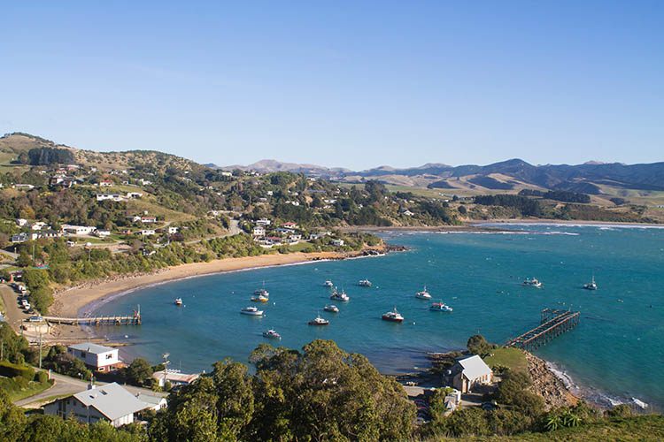 The best things to do in Moeraki, New Zealand -- a viewpoint above Moeraki Village