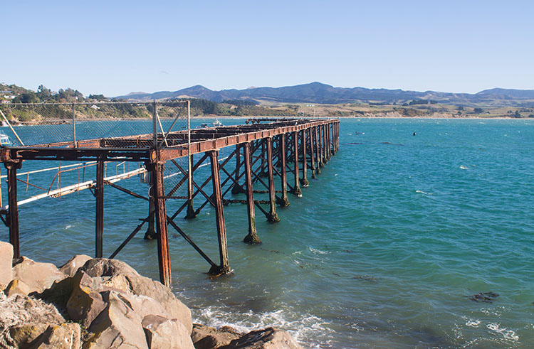 The best things to do in Moeraki, New Zealand -- photographing piers