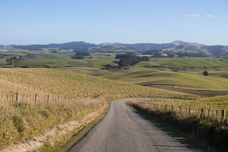 The best things to do in Moeraki, New Zealand -- driving to Kaika