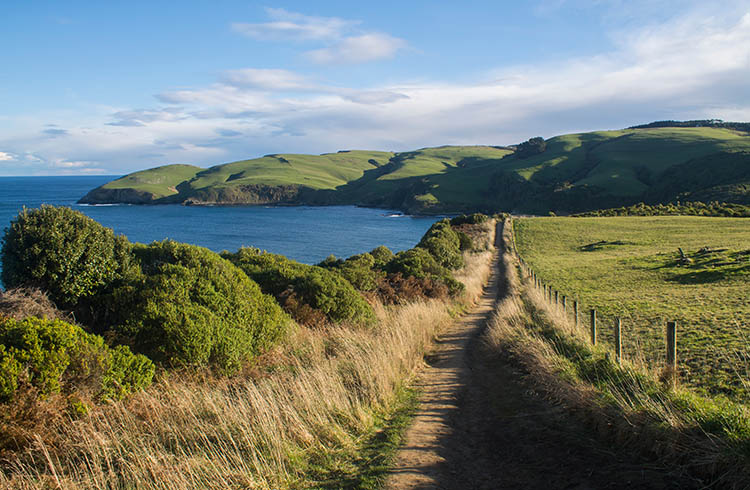 Walking from Jack's Bay to Jack's Blowhole, the Catlins, New Zealand