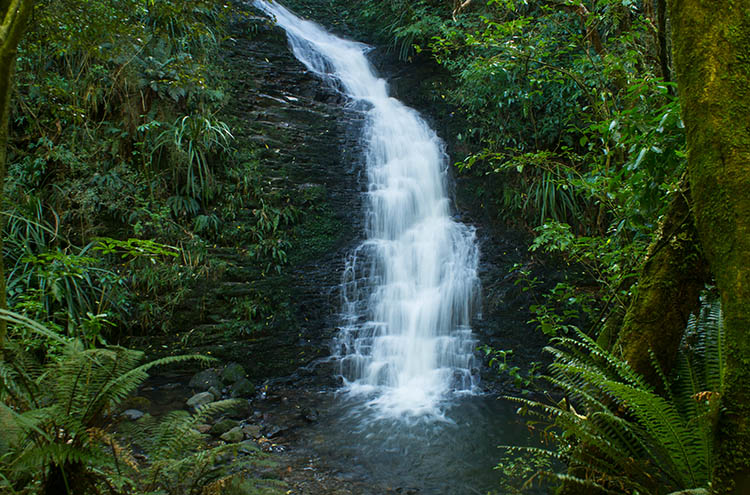 School Creek Falls, Dunedin, New Zealand