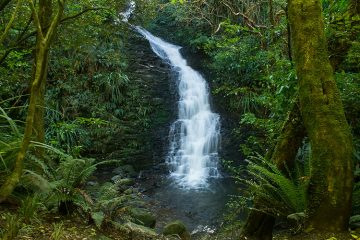 School Creek Falls, Ross Creek, Dunedin, New Zealand