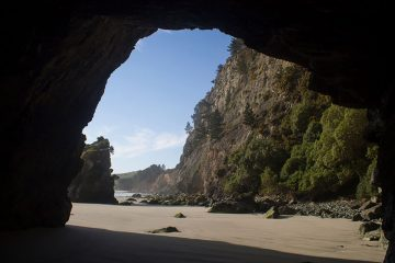 The Arches, Dunedin, New Zealand