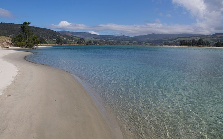 Warrington Beach, Dunedin, New Zealand