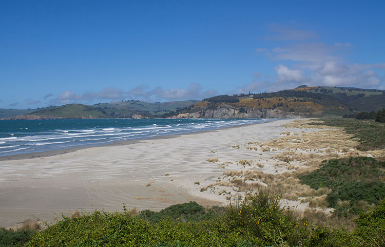 View of Warrington Beach from the village -- Dunedin, New Zealand