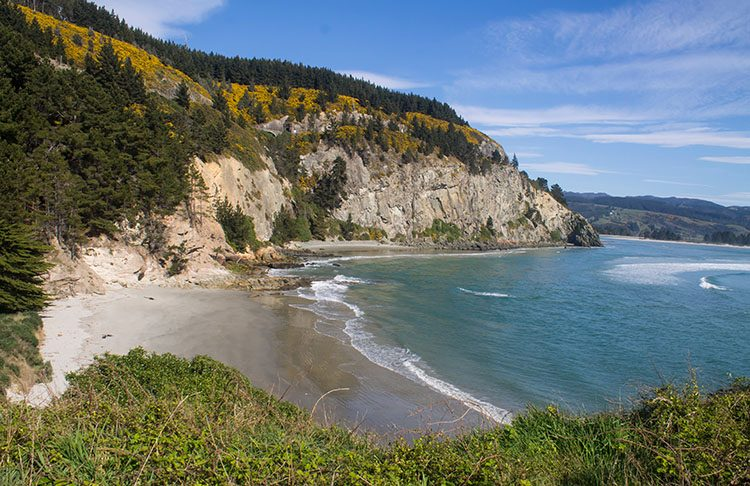 Canoe Beach, Dunedin | See the South Island NZ Travel Blog