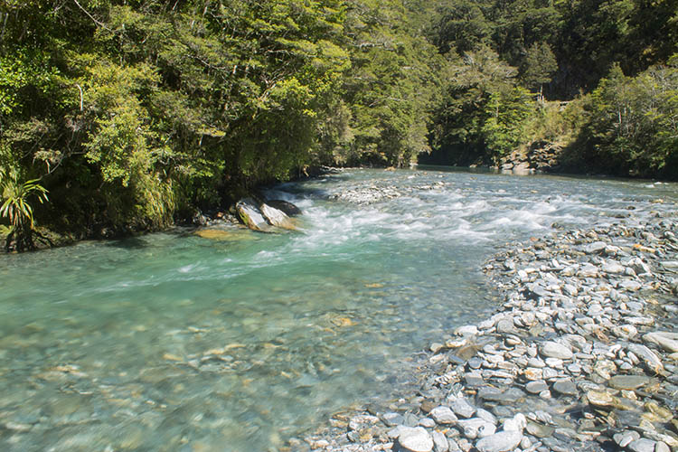 Clear river near Fantail Falls, Mount Aspiring National Park, New Zealand