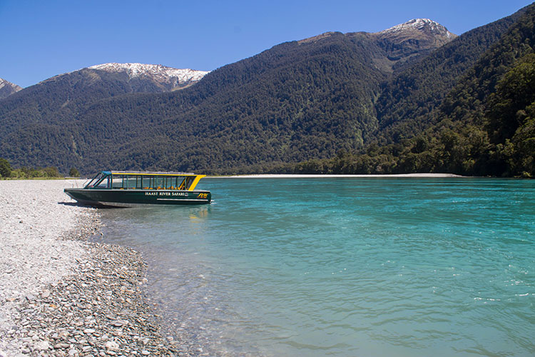 Haast River near Roaring Billy Falls, New Zealand
