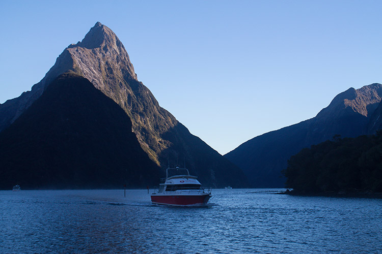 How to Plan a Milford Sound Cruise