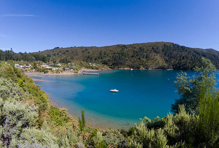 Viewpoint above Elaine Bay, Marlborough Sounds, New Zealand