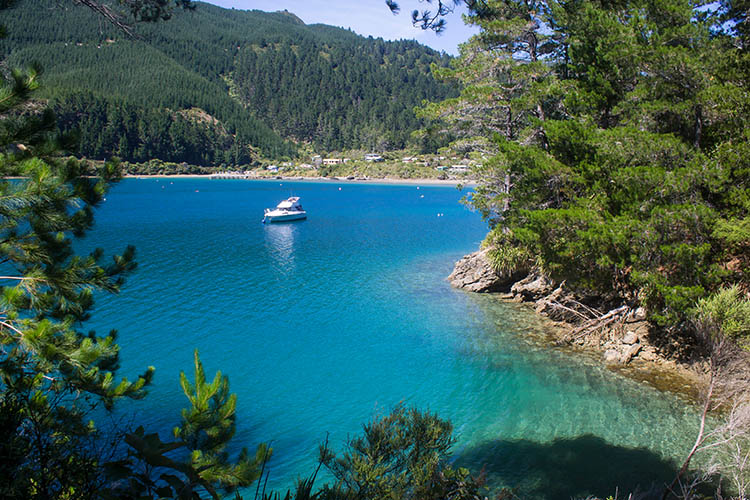 Hiking at Elaine Bay, Marlborough Sounds, New Zealand