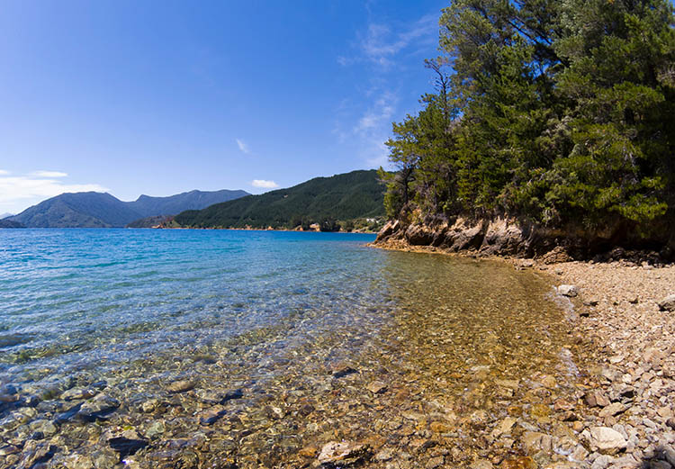Piwakawakawa Bay, a short hike from Elaine Bay, Marlborough Sounds, New Zealand