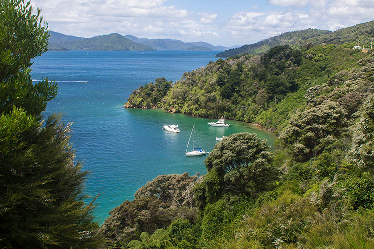 Governors Bay, Marlborough Sounds, New Zealand