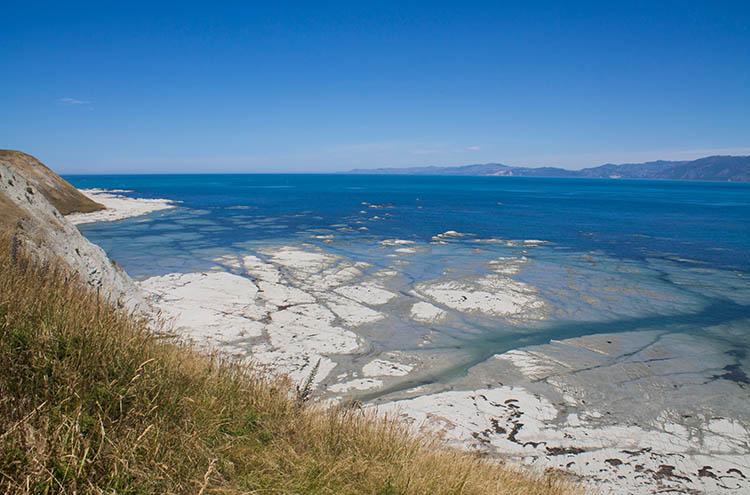 Beautiful view on the Kaikoura Peninsula Walkway, New Zealand