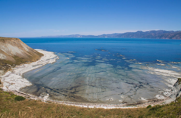Limestone Bay, Kaikoura Peninsula Walkway, New Zealand