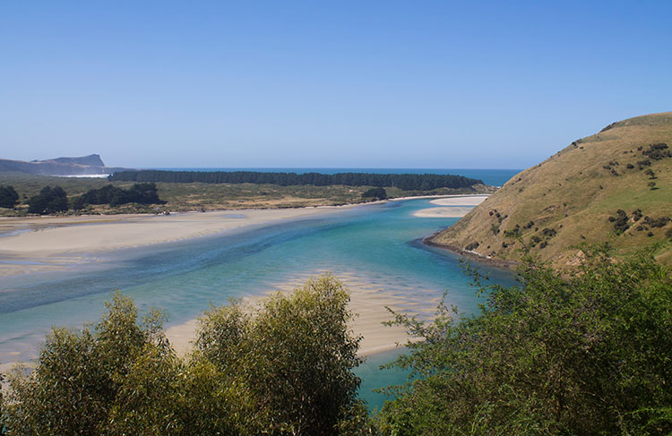 Stunning view of Papanui Inlet, Dunedin, New Zealand