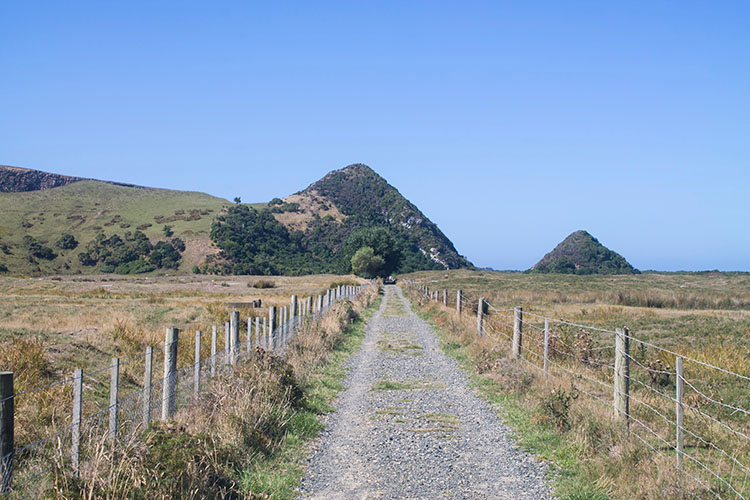 The track to the Pyramids and Victory Beach, Dunedin, New Zealand