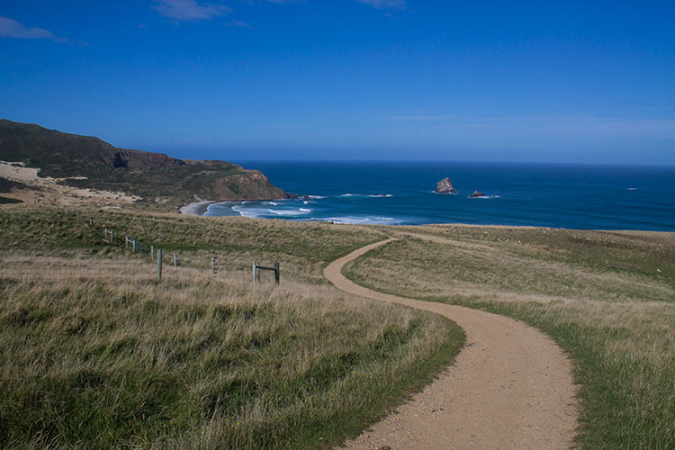 The track to Sandfly Bay, Dunedin, New Zealand