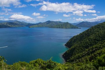 Hiking the Snout Track, Picton, New Zealand